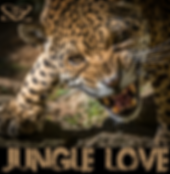JungleLove 27.PNG