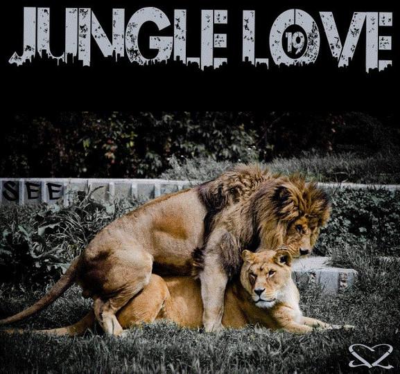 JungleLove 19