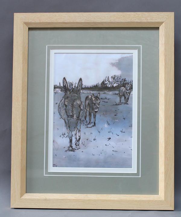 Donkeys at Awre