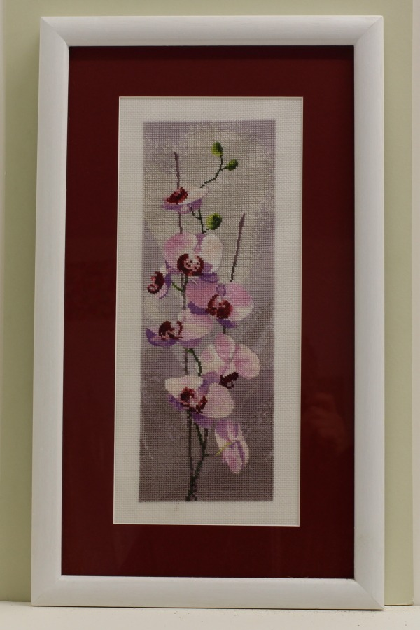 Orchid Cross Stitch