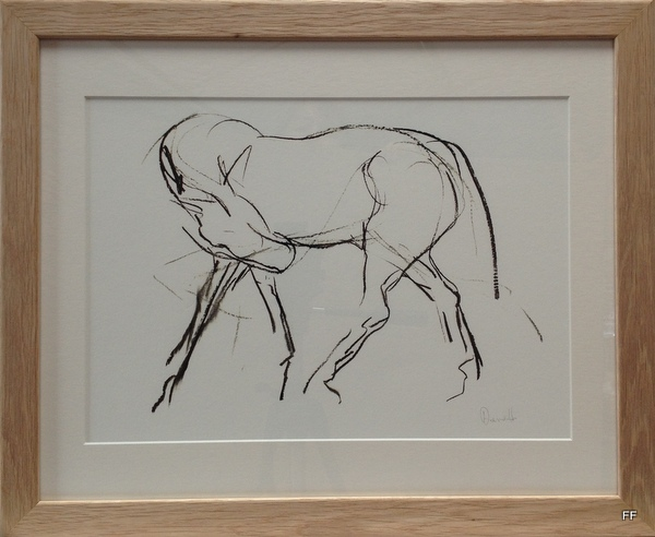 Horse in lines