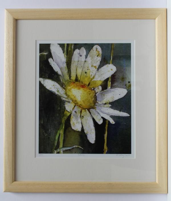 Daisy Ltd Ed print