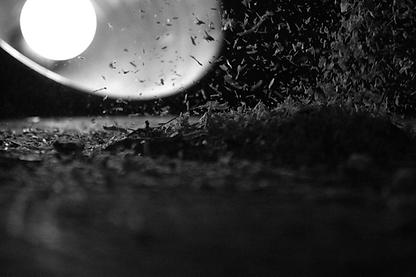 Sawdust Photograph