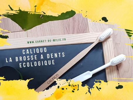 Caliquo, la brosse à dents écologique