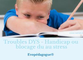 Troubles DYS - Handicap ou blocage du au stress, Barbara Boehringer Evopédagogue®