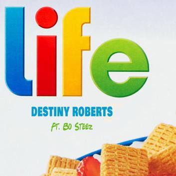 Life Art Cover