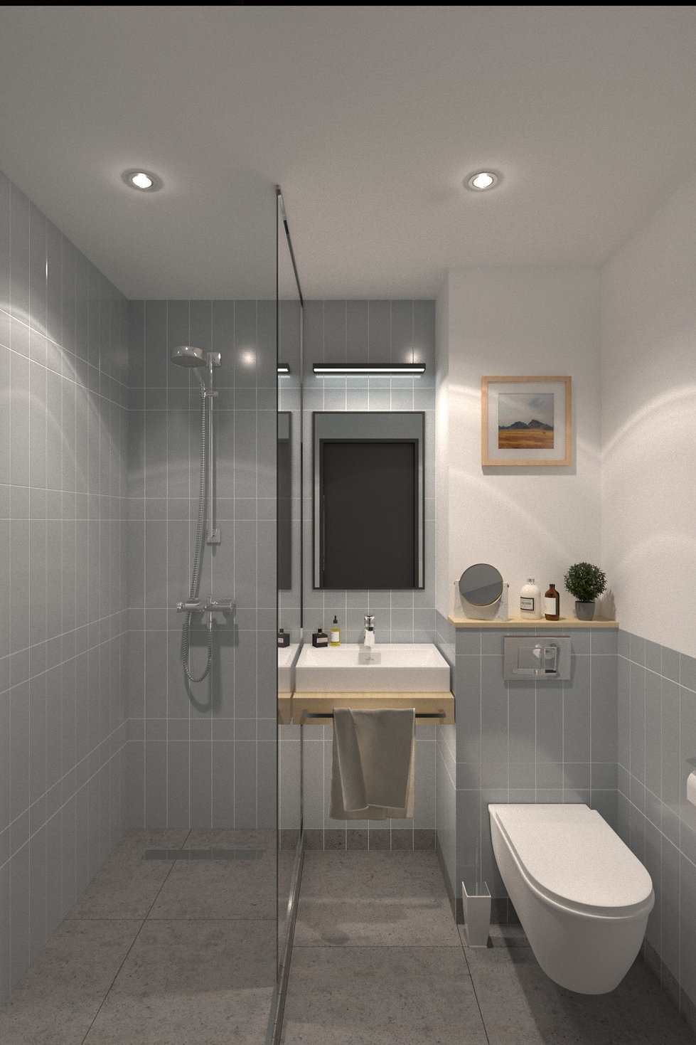 2 camera wc.jpg