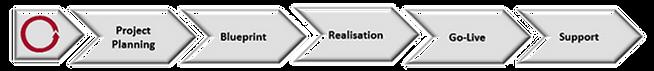 SAP-Project-Management_edited.png