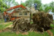 FEMA_-_44294_-_Damaged_Tree_removal_in_O