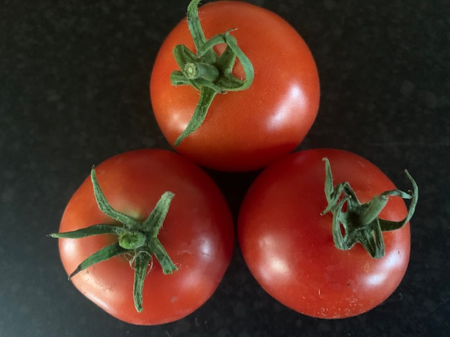 3rd Prize Tomatoes, three medium