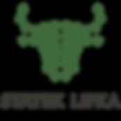 logo_statek.png