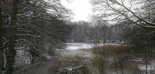 winter_small.jpg