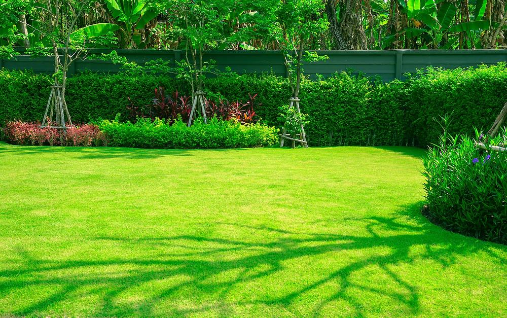 Contrat de pelouse prix