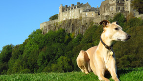 King's Knot at Stirling Castle: the SUBSCRIBE page shot