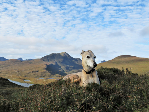 Exploring the North-West, Part Two: the Assynt Loop