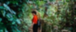 cuc-phuong-my-favorite-park.jpg