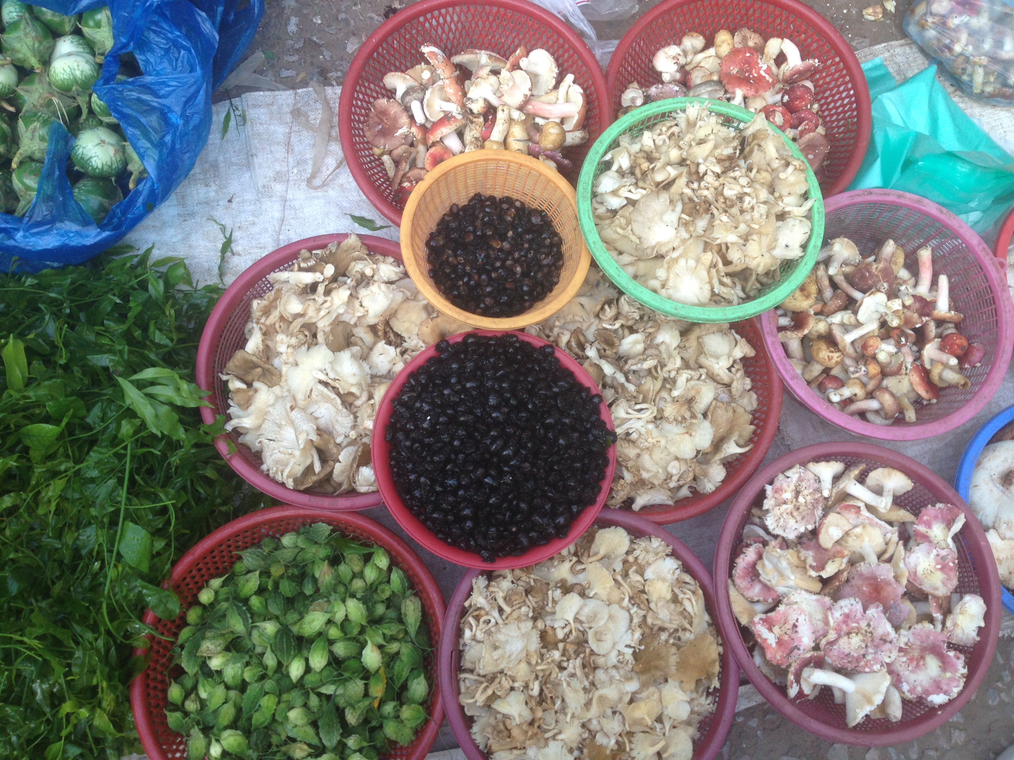 unusual-stuff-in-local-market-luang-prabang
