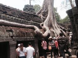 angkor-wat-heritage-cambodia