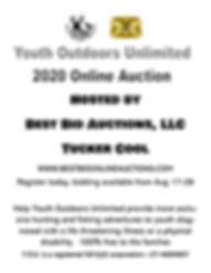 Online auction .jpg