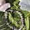 Thumbnail: Fluorite Bracelet