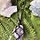 Thumbnail: Amethyst Macrame Wall Hanger