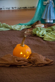 last lonely pumpkin 15.jpg