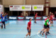 Clijsterssport handbal bochol