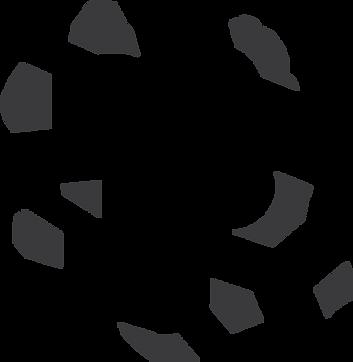 Partaasch-kolensteen-zwart.png