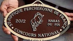 10iem de france 2012 - national percheron