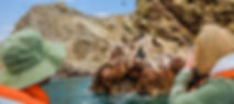 ica-islas-ballestas.jpg
