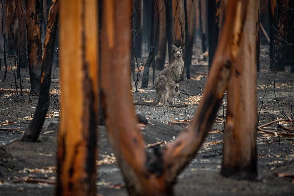 Climate-change-australia