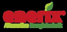 Enerix_Logo.png