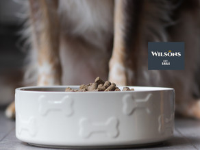 We've Teamed up with Wilsons Pet Food