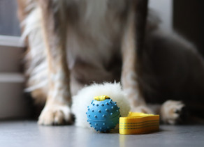The Secrets to Keeping Toys
