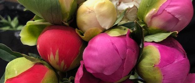 Farmer's Choice Bouquet-Small  10 to 15 stems