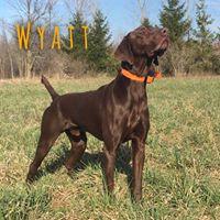 Congratulations to Wyatt