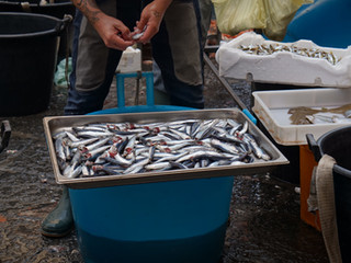 Mercato del pesce a Catania