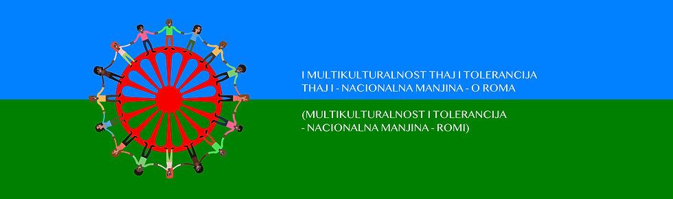 Nacionalne-manjine.jpg