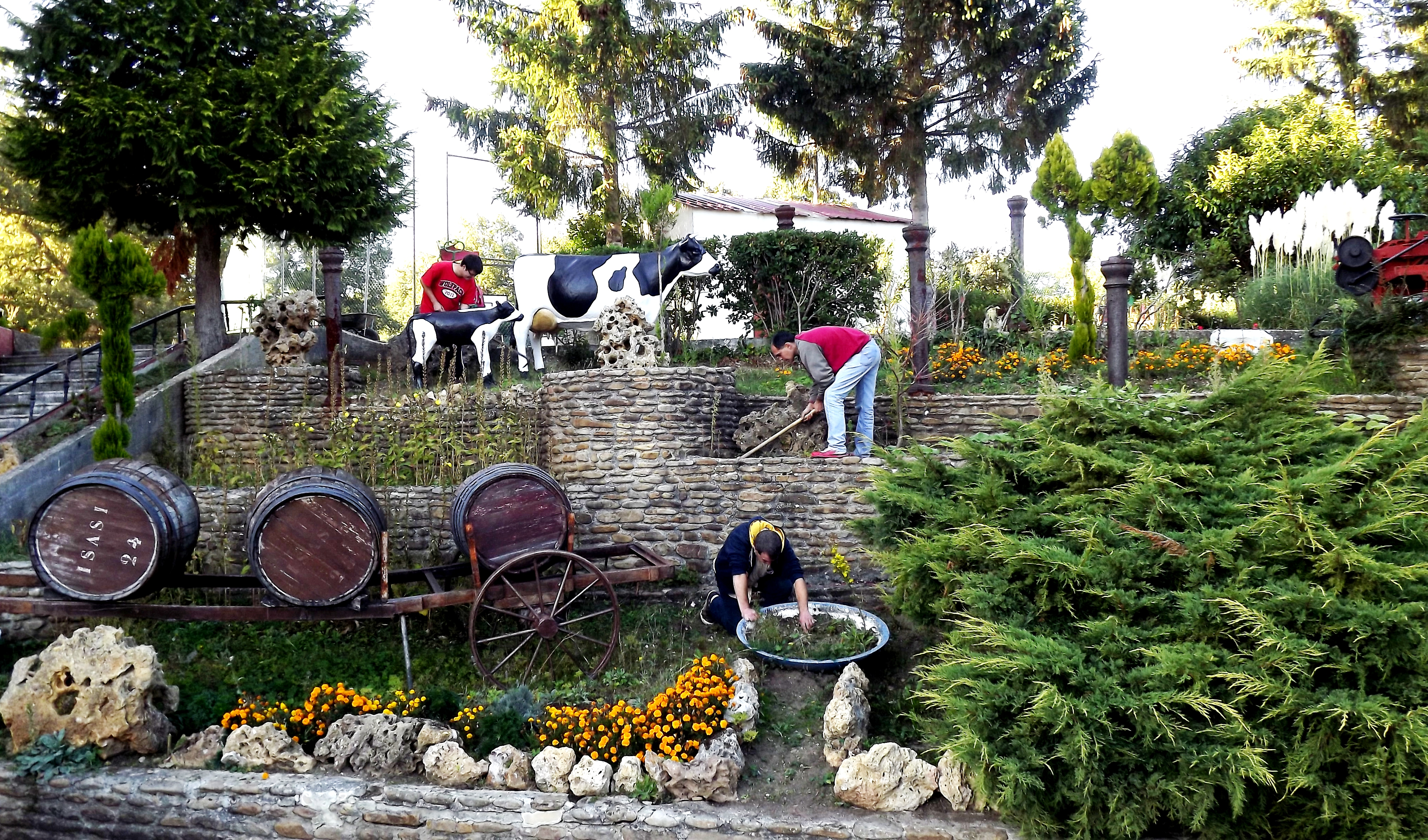 Actividad de Jardinería.