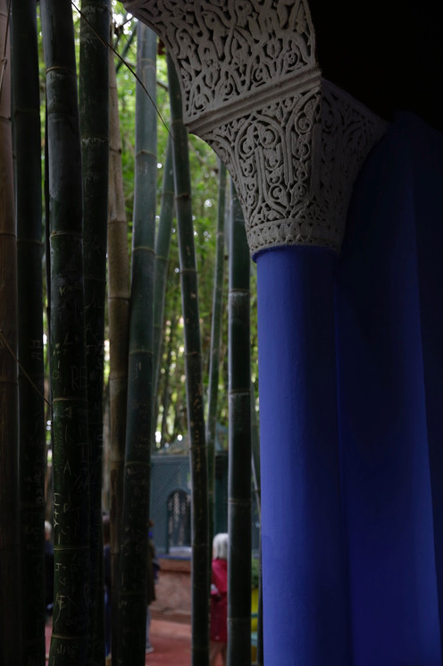 Angles of Majorelle Garden