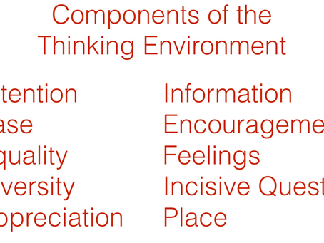 Shifting Stories and the Thinking Environment