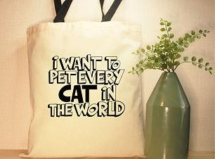 every cat2.jpg