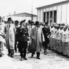 Fauci's Continuation of Jesuit Himmler's Herecidal Vocation