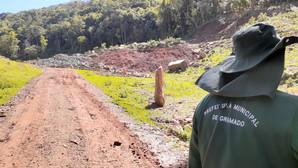 Fiscalização da Prefeitura identifica desmatamento de 20 hectares de mata nativa em Gramado
