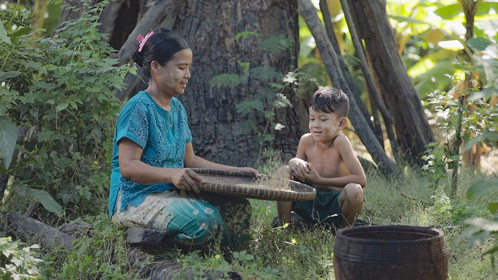 Growing rice growing lives (2).jpg