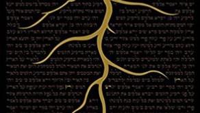 Va'era: How Do We Give Kavod To Hashem ~ Tzvi Abrahams