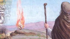 Matot: Extending Hashem's Hand in the World ~ Tzvi Abrahams