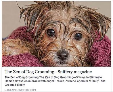 Hairy Tails Stress Free Pet Grooming Orange County NY Middletown NY Port Jervis NY Milford PA