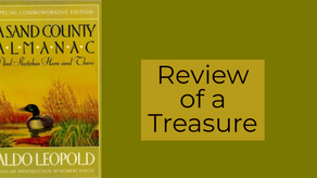 Book Review: Review of a Treasure