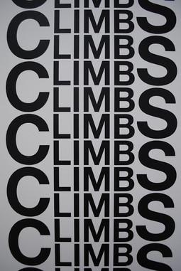 Limbs Climb (detail) (2011)